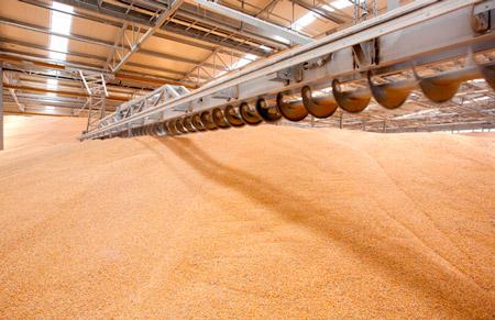 Зерновая пыль на элеваторах монтаж ленточный конвейера